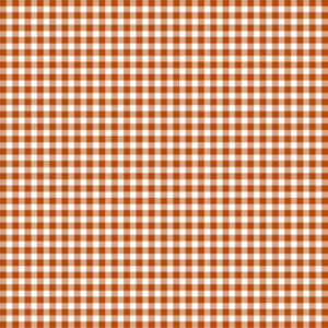 Copper & White Gingham